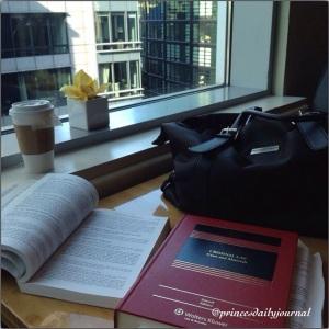 prince's briefcase (princesdailyjournal)
