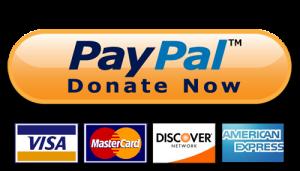 paypaldonatenow1-png_5316b6bd67aab